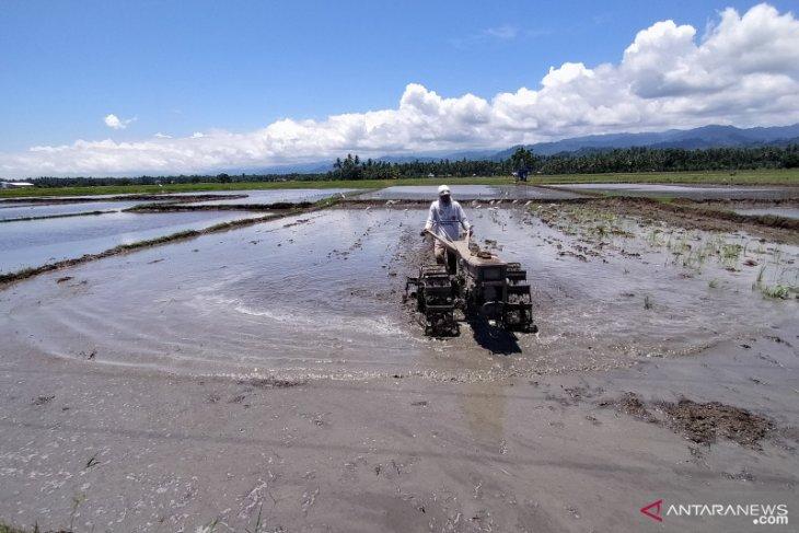 Dinas Pertanian imbau petani  membuka lahan tanpa membakar