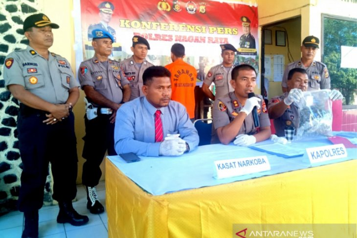 Simpan 0,3 Kg ganja, seorang warga Nagan Raya diringkus polisi