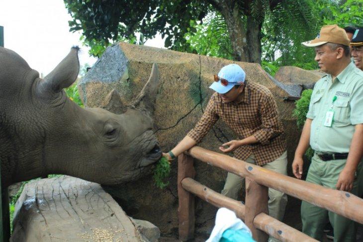 Taman Safari Indonesia melakukan langkah preventif antisipasi COVID-19