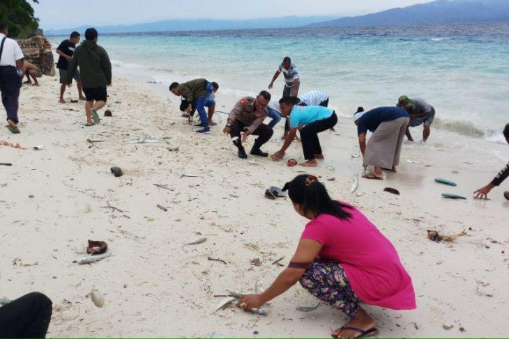 KKP memberikan penjelasan fenomena ikan hidup yang terdampar di Maluku Tengah