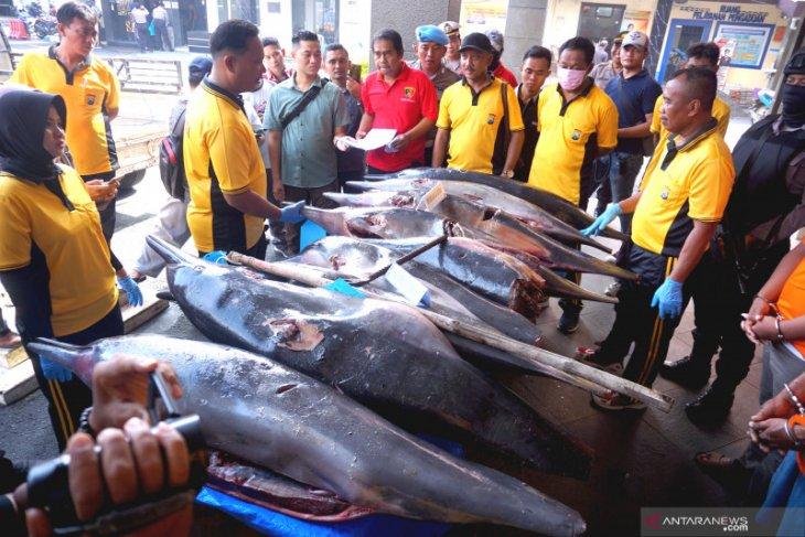 Polisi Tulungagung tangkap nelayan perjualbelikan lumba-lumba secara ilegal