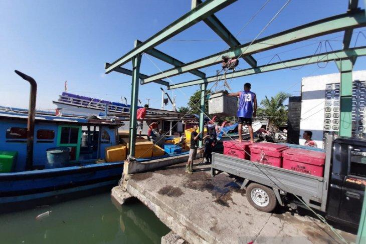 Nelayan di Belitung kelimpungan akibat harga ikan anjlok