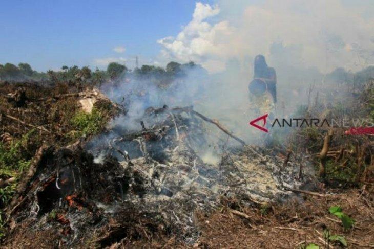 Seluas 300 hektare lahan hangus terbakar 3 bulan terakhir di Aceh