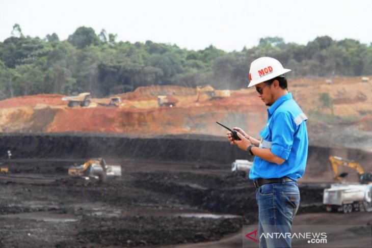 Mifa Bersaudara jamin pasokan batubara untuk kebutuhan dalam negeri