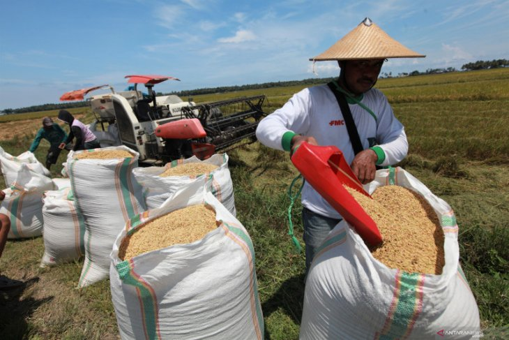 Jokowi wants essentials to be available at reasonable prices