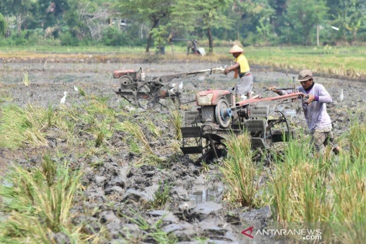 Komisi IV DPR usulkan tambahan dana untuk petani Rp2,44 triliun