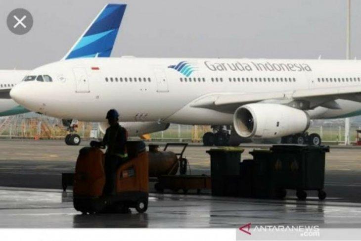 Pemerintah cari solusi bayar utang Garuda Indonesia