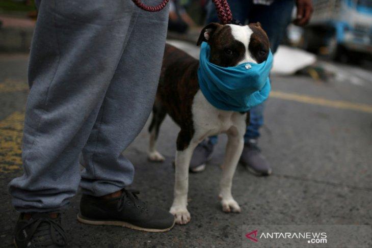 Di Kolombia kasus COVID-19 meningkat di atas 50.000