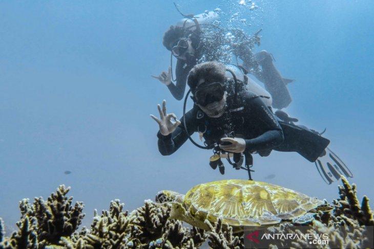 Pelaku wisata selam diajak siapkan strategi promosi usai pandemi corona