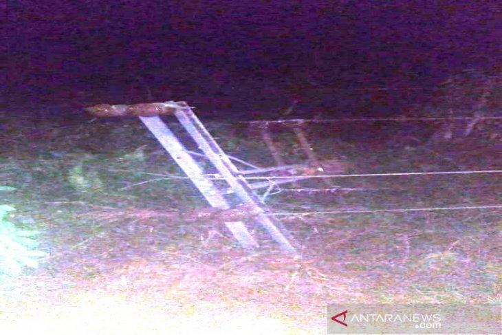 Pohon tumbang hantam tiang listrik, 21 ribu sambungan listrik di Tapsel padam