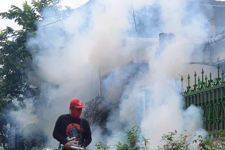 Preventing dengue, malaria to avoid double health burden amid corona