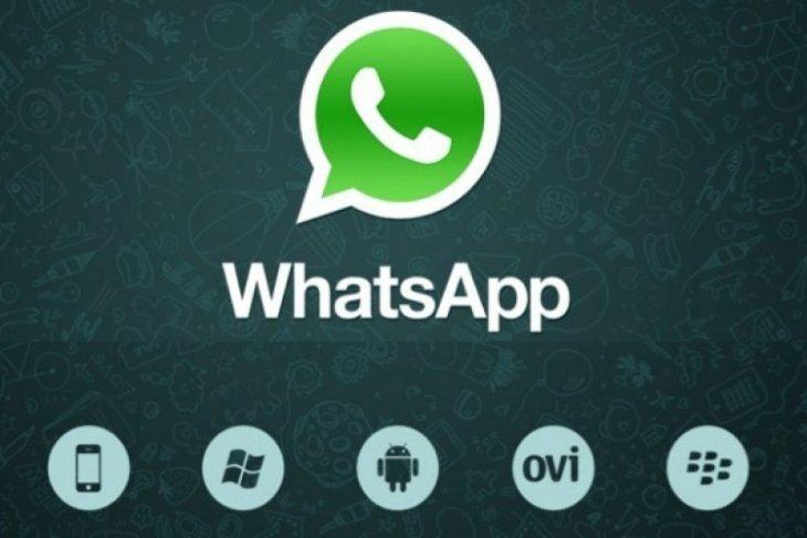 Ada fitur baru WhatsApp, apa saja itu?