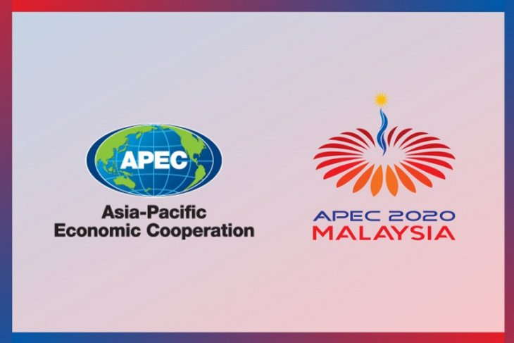 APEC trade ministers issue statement on COVID-19 pandemic