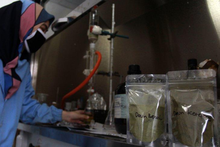 LIPI akan uji klinik imunomodulator herbal pada 90 pasien COVID-19