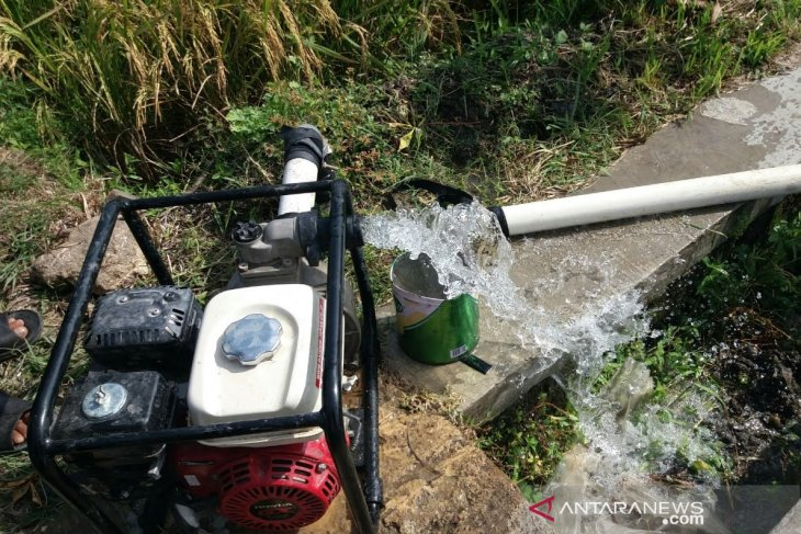 Kemarau segera tiba, pompa air dan sumur suntik jadi target  Kementerian Pertanian
