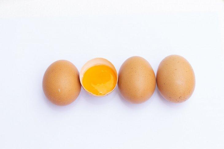 Mengenal ciri telur yang sehat dikonsumsi