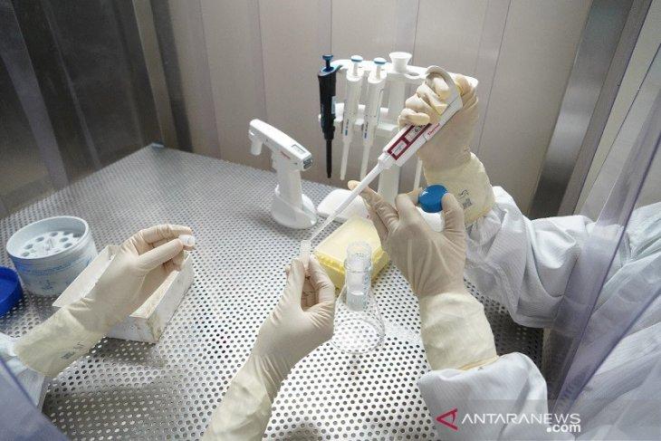 Menristek: Mutasi virus corona terdeteksi di sejumlah daerah Indonesia