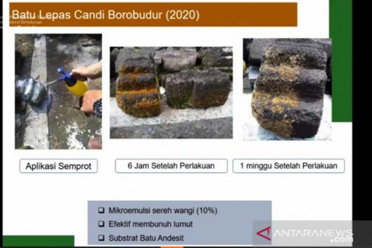 BKB to use citronella oil to preserve Borobudur Temple