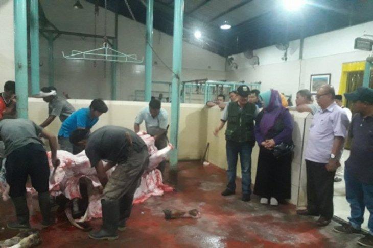 Ketersediaan daging sapi dan kerbau di Banten jelang Idul Fitri 1441 cukup