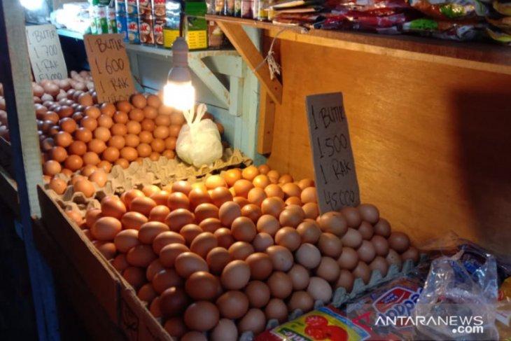Harga telur ayam ras di pasar Ambon normal