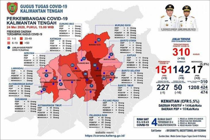 Kasus positif COVID-19 Kalteng capai 310 orang