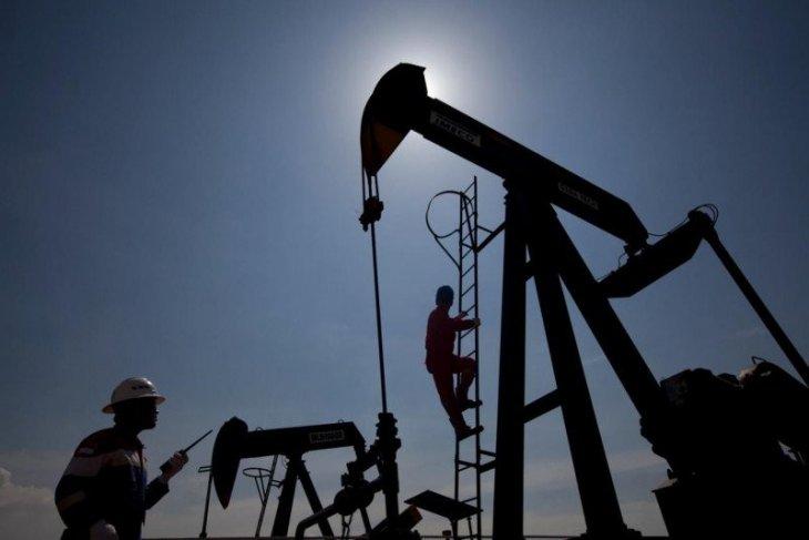 Harga minyak mentah turun tertekan ketegangan AS-China