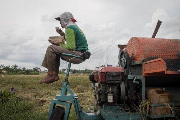 Realisasi program asuransi usaha tani padi