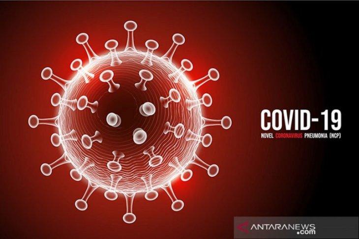 Pasien sembuh COVID-19 di Sumut bertambah jadi 145 orang