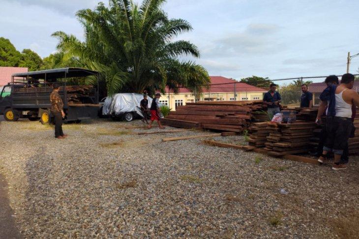 Polisi tangkap pelaku illegal logging di Abdya