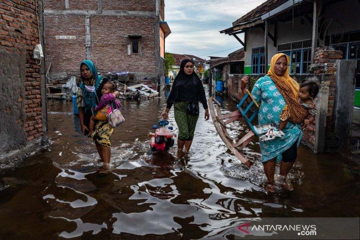 BMKG ingatkan banjir pesisir dampak ombak tinggi dan pasang maksimum