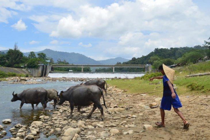 Petani Abdya tagih janji Pembangunan sayap kanan irigasi Krueng Susoh