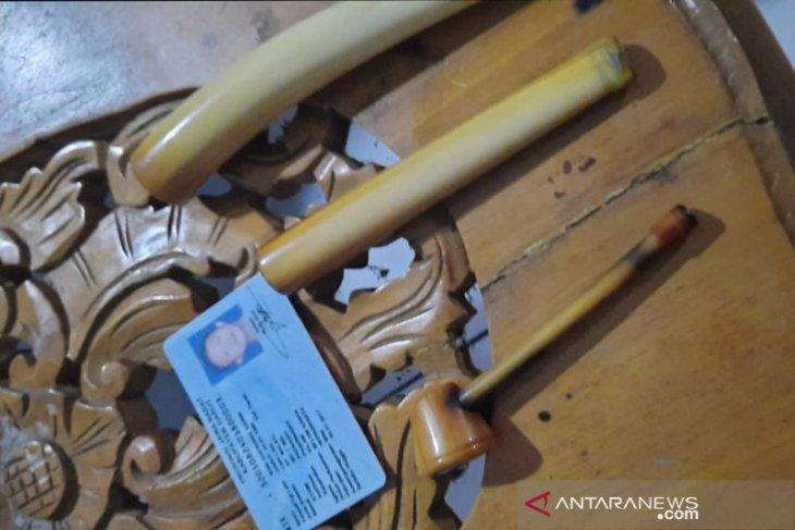 Pemilik pipa rokok gading gajah sumatera ditangkap tim KLHK
