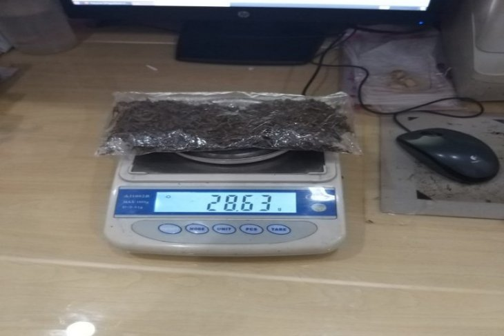Polres Jayawijaya tangkap OR usai ambil paket berisi ganja di Wamena