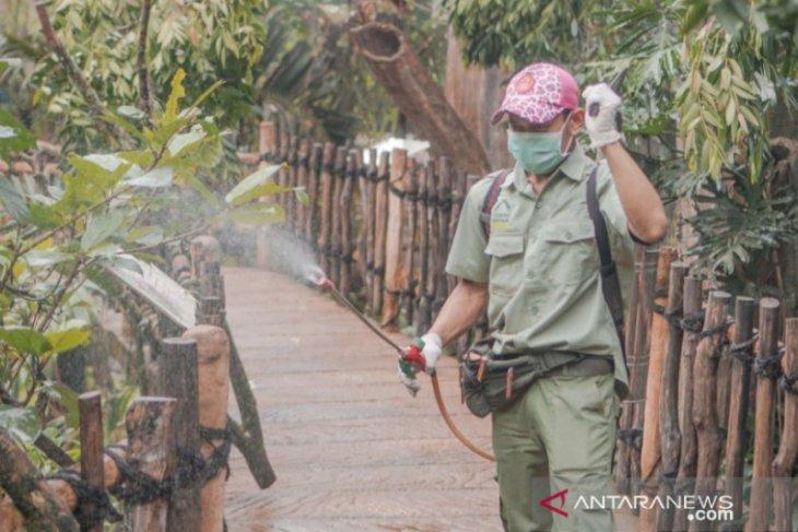 Royal Safari Garden Bogor siapkan konsep