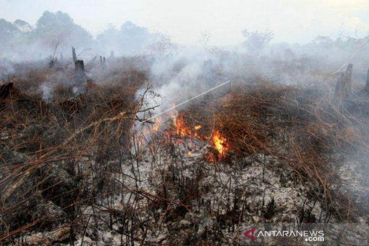 2,1 hektare lahan gambut di Aceh terbakar