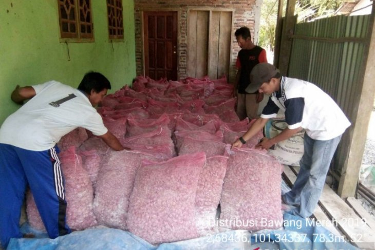 Puluhan kelompok tani di Mukomuko terima benih jagung