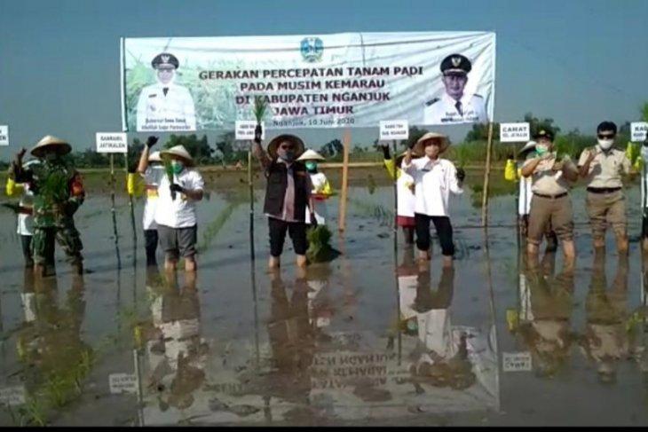 BBKP Surabaya dukung program percepatan tanam padi di Nganjuk
