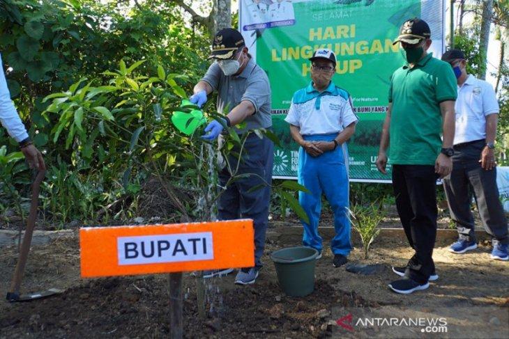 Peringati hari lingkungan hidup sedunia, Pemkab HSS tanam ratusan pohon