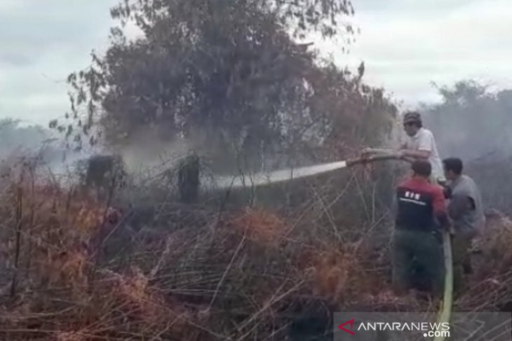 Land, forest fires ravage West Aceh's 2.1-acre land this week