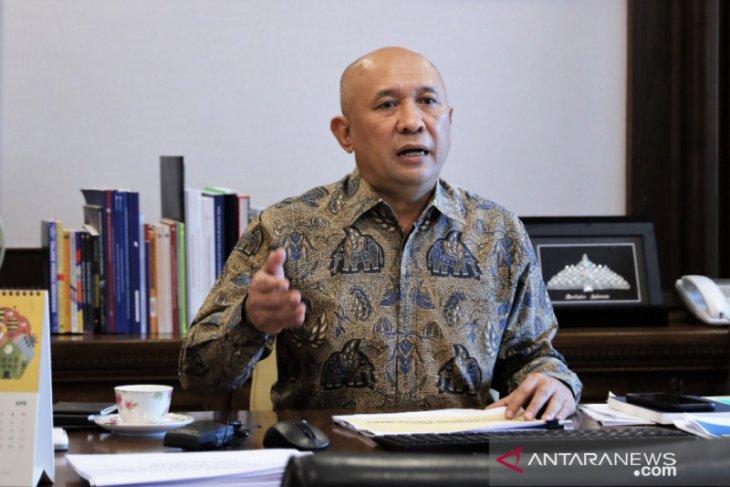 Menteri Teten apresiasi ratusan UMKM kuliner