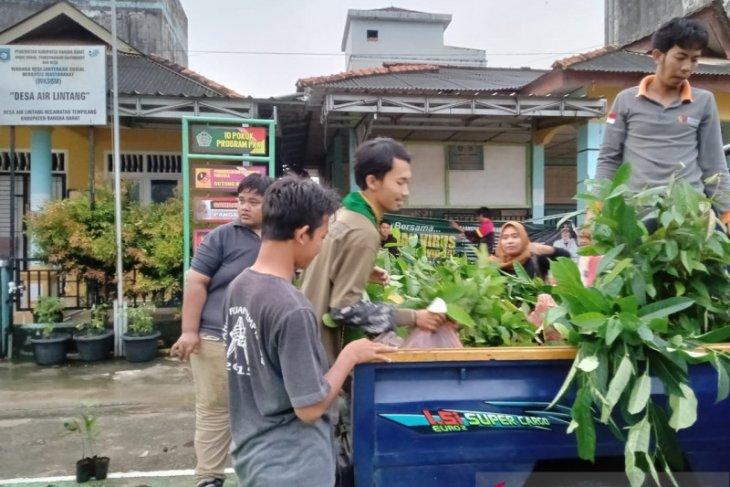 Forum Pelajar Peduli Lingkungan Babel bagikan 2.000 bibit tanaman buah