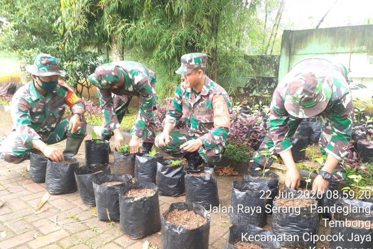 Kodim 0602/Serang kembangkan budidaya cabai melalui 1000 Polybag