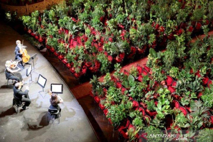 Ribuan  tanaman jadi penonton konser di Gedung Opera Liceu Barcelona