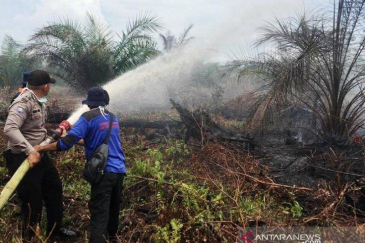Hingga Juni 2020, Seluas 23,7 HA di Nagan Raya terbakar akibat Karhutla