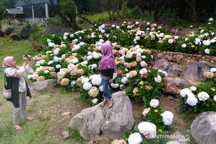 Wisatawan lokal dominasi kunjungan ke objek  wisata Garut di masa normal baru
