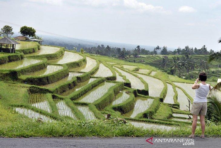 Tabanan applies integrated farming concept for ecotourism development