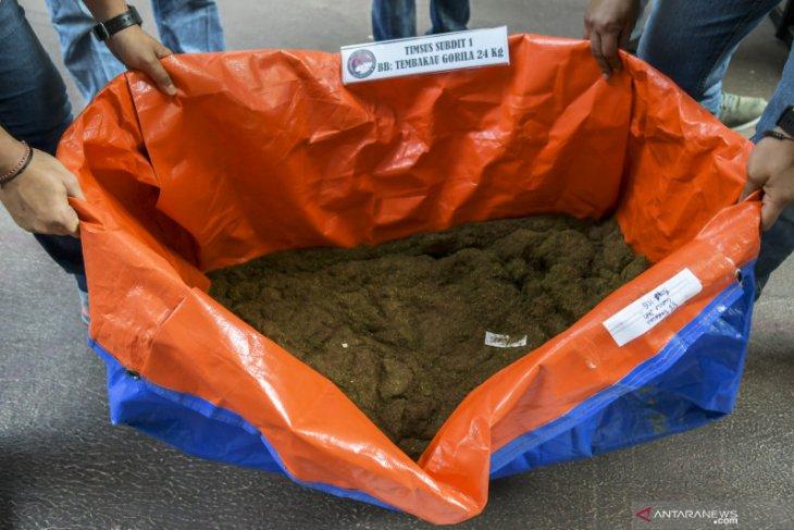 Pembuat tembakau gorila cair samarkan  bahan baku sebagai pemutih