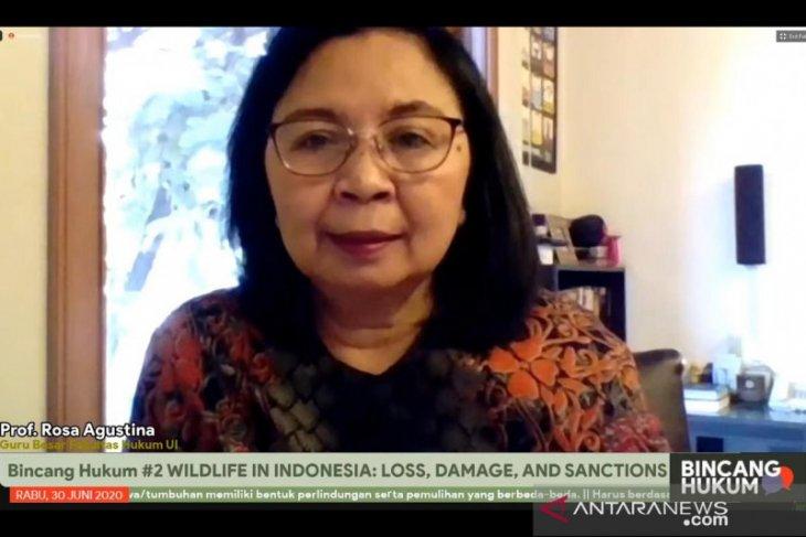 Prof Rosa Agustina: Indonesia butuh peradilan lingkungan hidup