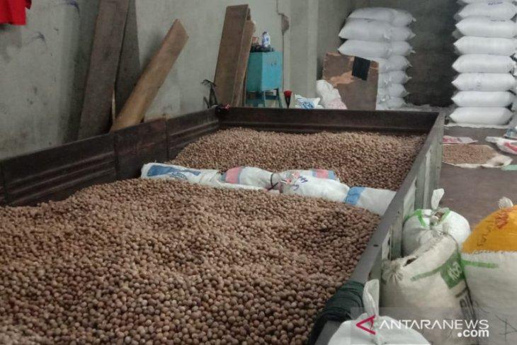 Harga sejumlah hasil perkebunan Maluku turun