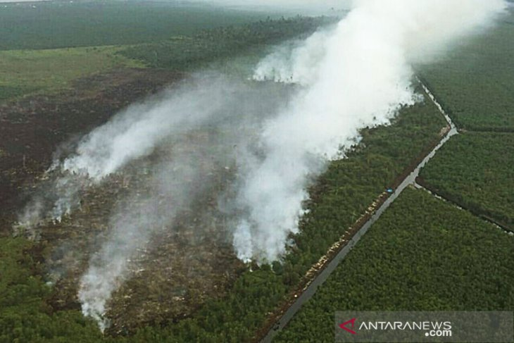 Six regions in Riau on alert for land, forest fires